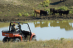 Rancher uses Arctic Cat Prowler to survey cattle at a water hole on South Dakota ranch