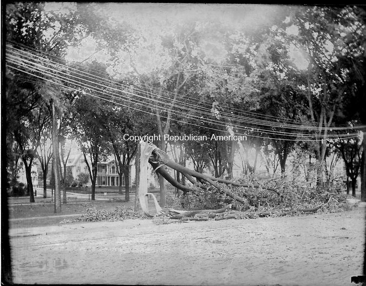 Frederick Stone negative. Green Windstorm July 4, 1891.