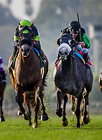 ARCADIA, CA - DECEMBER 26: Bowies Hero #5 with Kent Desormeaux overtakes #1 Kroy and Javier Castellano to win the Mathis Brothers Mile at Santa Anita Park on December 26, 2017 in Arcadia, California. (Photo by Alex Evers/Eclipse Sportswire/Getty Images)