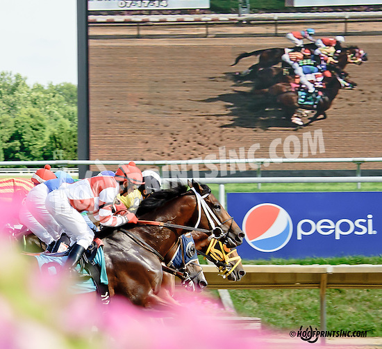 General Ike winning at Delaware Park on 7/17/14