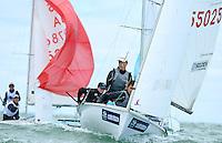 2013 Sail Melbourne - 420's