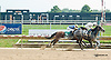 Rugby Road winning at Delaware Park on 9/11/13