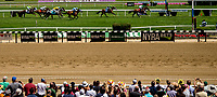 ELMONT, NY - JUNE 09: Fans watch the opening racing on Belmont Stakes Day at Belmont Park on June 9, 2018 in Elmont, New York. (Photo by Kazushi Ishida/Eclipse Sportswire/Getty Images)