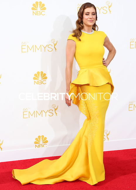 LOS ANGELES, CA, USA - AUGUST 25: Actress Kate Walsh arrives at the 66th Annual Primetime Emmy Awards held at Nokia Theatre L.A. Live on August 25, 2014 in Los Angeles, California, United States. (Photo by Celebrity Monitor)