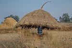 Farmer, Madhya Pradesh, India