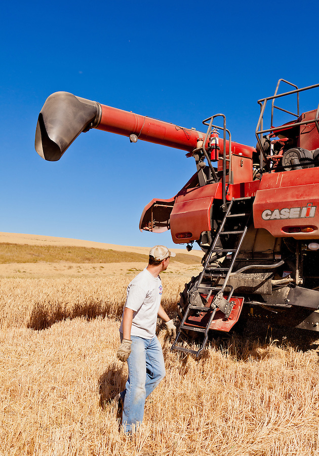 A farmer inspects his Case 8120 combine.