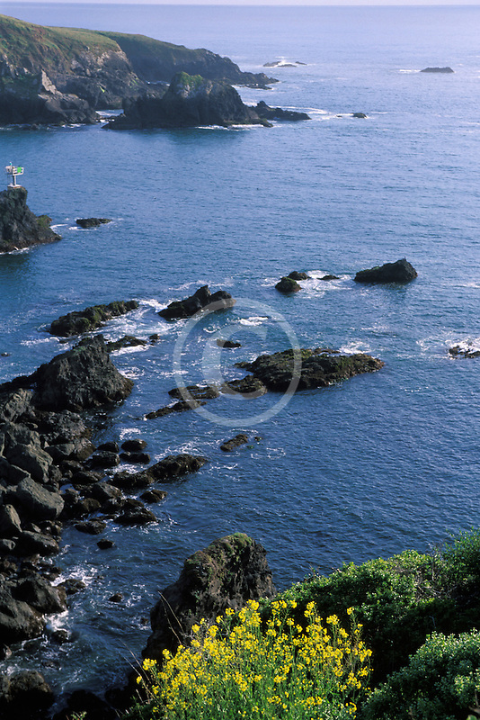 California, Mendocino County, Albion Cove