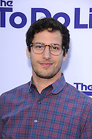 WESTWOOD, CA - JULY 23: Andy Samberg attends the premiere of CBS Films' 'The To Do List' at the Regency Bruin Theatre on July 23, 2013 in Westwood, California. (Photo by Celebrity Monitor)