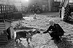 Puppy Farming Wales 1989. RSPCA inspector Peter Anderson checks on a German shepherd chained up and living in terrible condition.