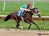 Daddy Look winning at Delaware Park on 10/9/13