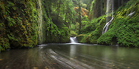 "The ""weeping walls"" deep in the heart of Oregon's Columbia Gorge."