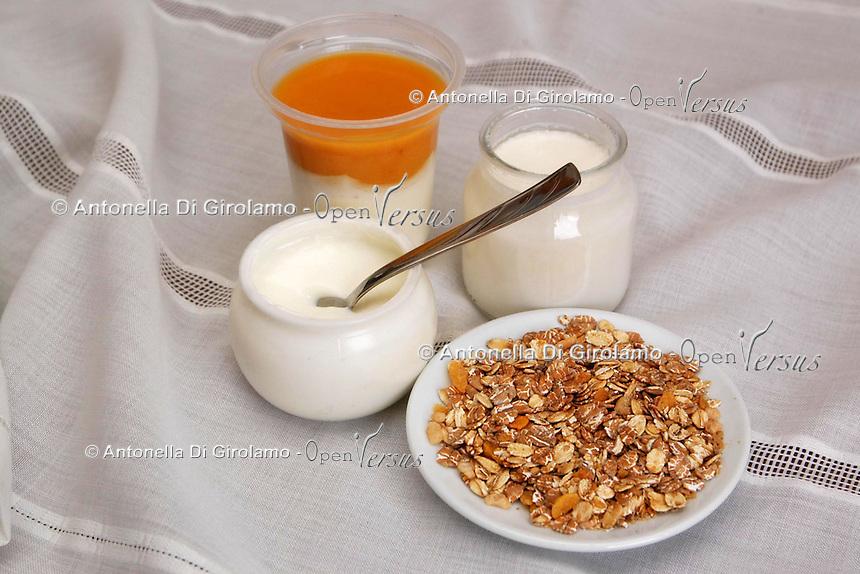 Yogurt. Yoghurt..
