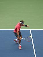 Del Potro Forehand US Open 2013