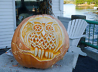 Beautifully carved pumpkin into outline of an owl for pumpkin festival Damariscotta Maine, 2010
