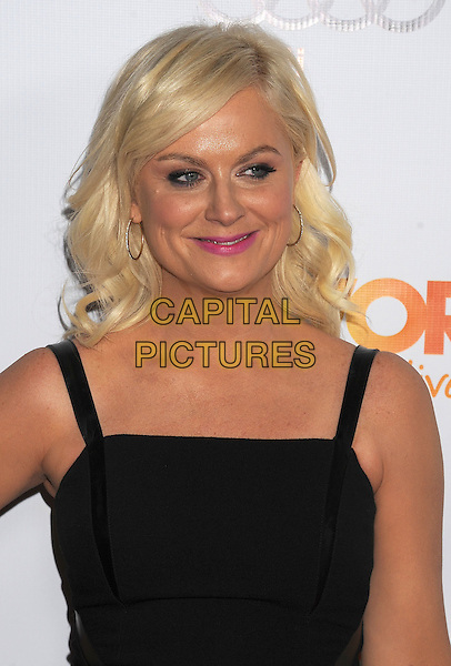 Amy Poehler.Trevor Live at The Hollywood Palladium in Hollywood, California, USA..December 4th, 2011.headshot portrait black   .CAP/ROT/TM.©Tony Michaels/Roth Stock/Capital Pictures