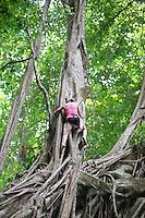 Tree Climbing Costa Rica