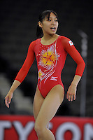 02/20/09 - Photo by John Cheng for USA Gymnastics.