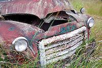 Old truck in field near Sequim, Washington.