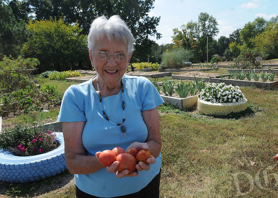 NWA Democrat-Gazette/FLIP PUTTHOFF <br /> AUTUMN HARVEST<br /> Jean Melrose shows some of the tomatoes she picked  Tuesday Oct. 6 2015 from the community garden at First Presbyterian Church in Rogers. She also picked a bundle of kale from one of the raised beds. A variety of vegetables and flowers are grown in the church garden at 26th and New Hope Road in Rogers.