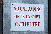 No loading TB exempt cattle sign <br /> &copy;Tim Scrivener Photographer 07850 303986<br />      ....Covering Agriculture In The UK....