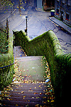Stone Staircase with Autumnal leaf litter on urban street