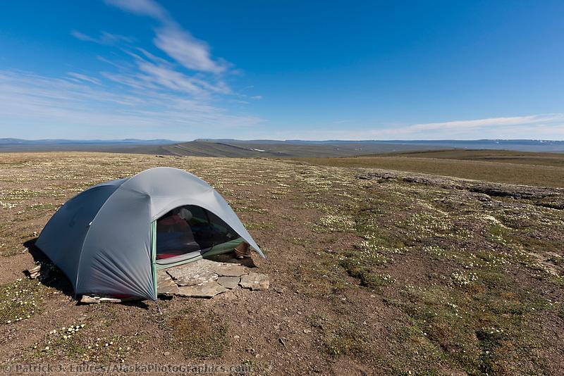 Tent camp, Utukok Uplands, National Petroleum Reserve Alaska, Arctic, Alaska.