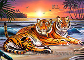 Interlitho, Lorenzo, REALISTIC ANIMALS, paintings, 2 tigers, beach(KL3973,#A#) realistische Tiere, realista, illustrations, pinturas ,puzzles