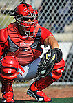 20 February 2011: Washington Nationals' catcher Ivan Rodriguez catches a pitch during Spring Training at the Carl Barger Baseball Complex in Viera, Florida. Mandatory Credit: Ed Wolfstein Photo