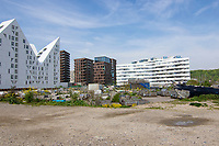 Modern Architecture at Aarhus Oe Jutland Denmark, with blue summer sky as backdrop and Urban gardening as front.