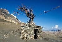 Indien, Ladakh (Jammu+Kashmir), Gebetsfahnen