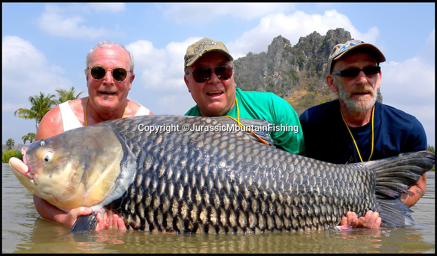 BNPS.co.uk (01202 558833)<br /> Pic: JurassicMountainFishing/BNPS<br /> <br /> ***Please use full byline***<br /> <br /> Pictured in 2015 (l to r) Ron Hopper, Paul Fairbrass and Cliff Dale.<br /> <br /> Two anglers honoured their late fisherman friend by turning his ashes into a bait that snared a monster 180lbs catch.<br /> <br /> Ron Hopper, 64, died from cancer before he could go on a much-anticipated fishing holiday to Thailand with Paul Fairbrass and Cliff Dale.<br /> <br /> While Ron was on his deathbed the trio agreed Paul and Cliff, both aged 65, should take his ashes to the Far East with them and infuse them with a special bait mix to make 'boilies'.