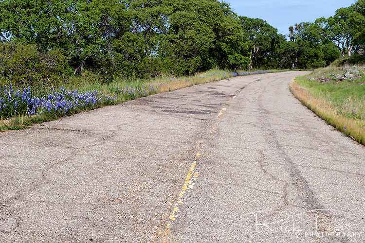 Telegraph Road is an abandoned section of California Highway 4 in the California Foothills near the ghost town of Telegraph City.