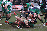 Connacht centre David McSharry is hauled down just short of the Dragons try line.<br /> Guiness Pro12<br /> Gwent Dragons v Connacht<br /> Rodney Parade<br /> 22.02.15<br /> ©Steve Pope -SPORTINGWALES