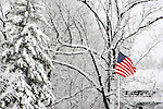 A American Flag flying among the snow covered trees in rural Wisconsin