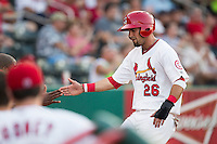 Luis Mateo (26) of the Springfield Cardinals high fives teammates in the dugout after scoring during a game against the Northwest Arkansas Naturals at Hammons Field on August 20, 2013 in Springfield, Missouri. (David Welker/Four Seam Images)