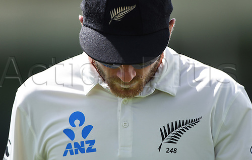 24.02.2016. Christchurch, New Zealand.  Kane Williamson on Day 5 of the 2nd test match. New Zealand Black Caps versus Australia. Hagley Oval in Christchurch, New Zealand. Wednesday 24 February 2016.