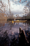 Maryland, Eastern Shore, Woman kayaker paddling Nassawango Creek, Nature Conservancy preserve, Pocomoke River, Chesapeake Bay, released, Maggie Coon,.