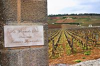 pinot noir vineyard la grande rue dom f lamarche vosne-romanee cote de nuits burgundy france