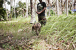 KOH SAMUI, THAILAND OCT 2013:<br />