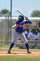 New York Mets John Mora (4) during a minor league spring training game against the Miami Marlins on March 30, 2015 at the Roger Dean Complex in Jupiter, Florida.  (Mike Janes/Four Seam Images)