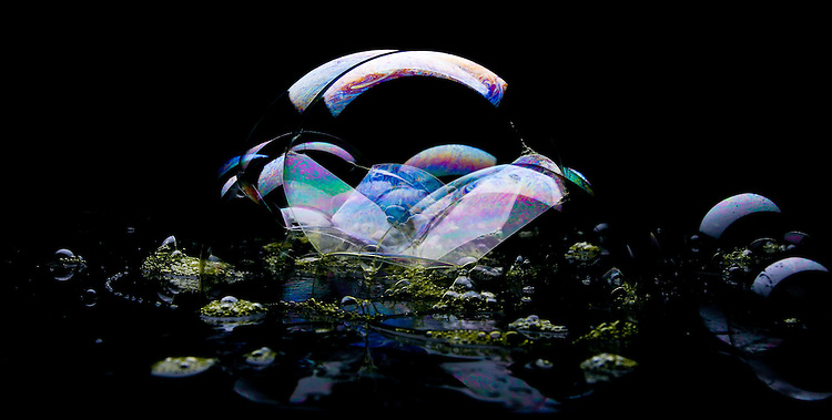 Close Up of Bubbles and their Reflections