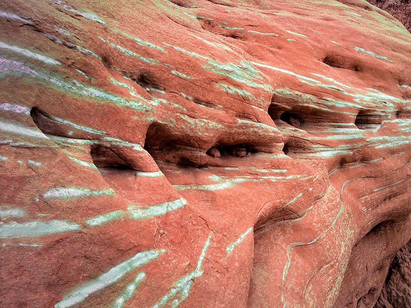Green stripes on rock  in Escalante Staircase National Monument, Utah