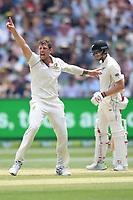 28th December 2019; Melbourne Cricket Ground, Melbourne, Victoria, Australia; International Test Cricket, Australia versus New Zealand, Test 2, Day 3; James Pattinson of Australia appeals for a wicket