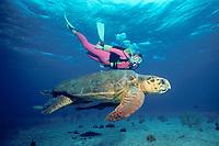 loggerhead sea turtle, Caretta caretta, and diver, Bahamas, Caribbean Sea, Atlantic Ocean