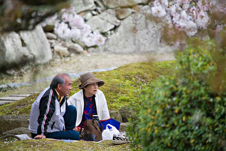 Couple enjoying a picnic at Himeji Castle during Sakura Matsuri, the annual Cherry Blossom Festival