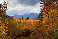 Falls golden glow with snow capped peaks at Lundy Lake in the eastern Sierra Nevada.
