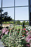 July 29, 2011. Cary, NC.. The SAS campus contains many types of flowering plants and shrubs that add color to the buildings and lawns.. Profile of SAS, a software company that has many amenities for its employees.