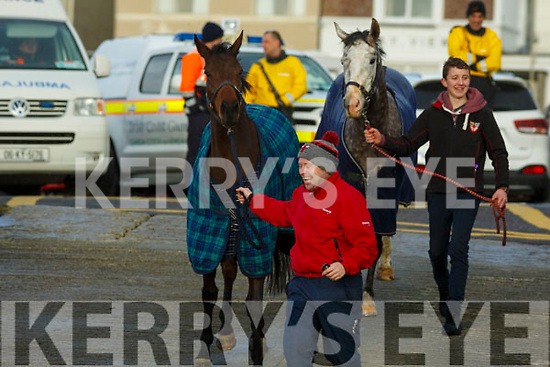 Horses to the ready as the horses go out for a canter prior to the start of the Ballyheigue Races on Wednesday last.