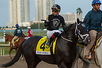 HALLANDALE BEACH, FL  JANUARY 27: #4 Sharp Azteca, ridden by Irad Ortiz, Jr., in the post parade of the Pegasus World Cup Invitational, at Gulfstream Park Race Track on January 27, 2018,  in Hallandale Beach, Florida. (Photo by Casey Phillips/ Eclipse Sportswire/ Getty Images)