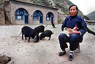 September, 1985. Shaanxi Province, China. Local farmers with their animals, pigs, dogs and chickens live together as domestic animals.